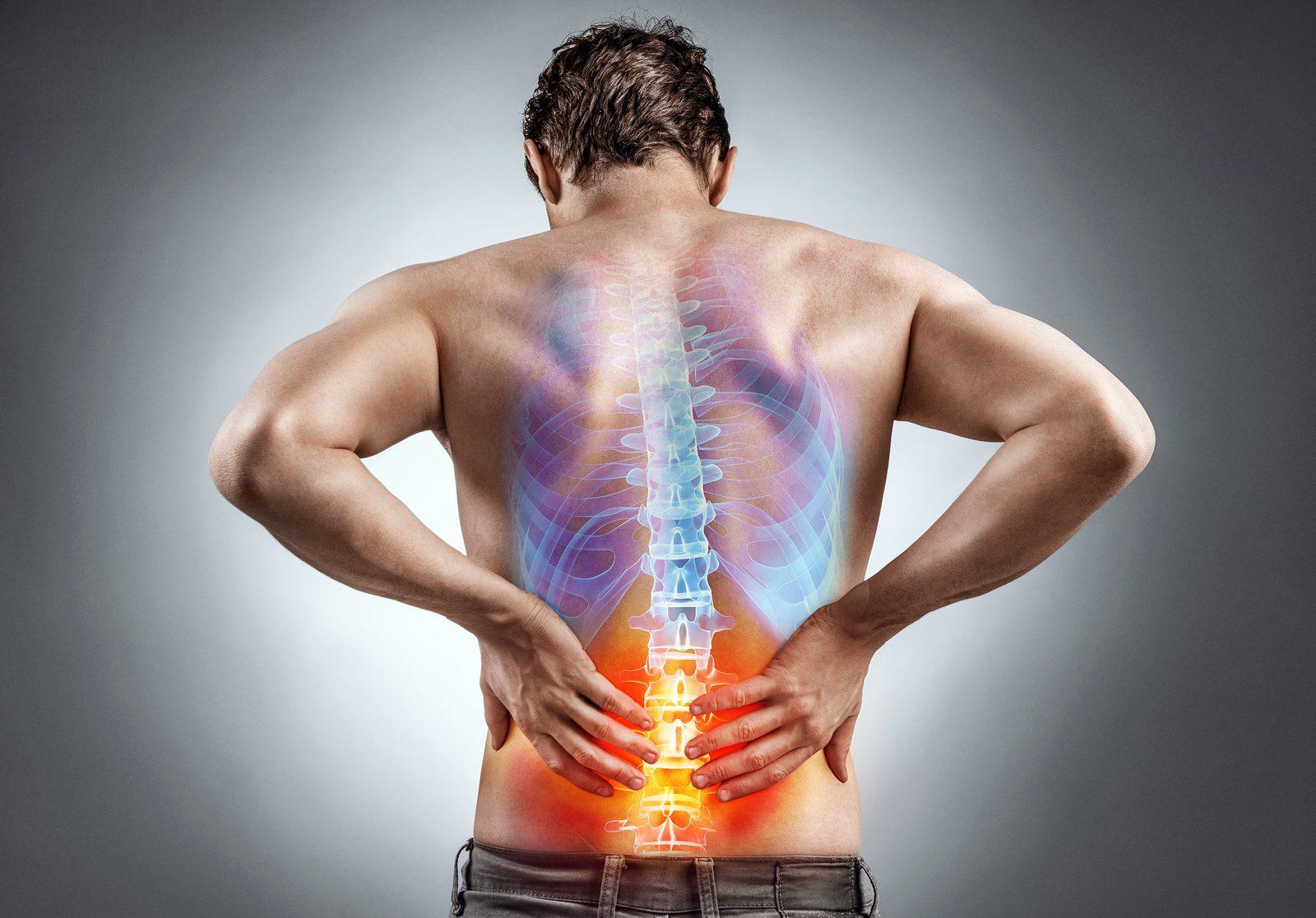 Back Pain Greenacres Adelaide